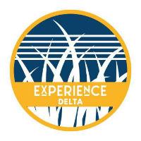 Experience Delta